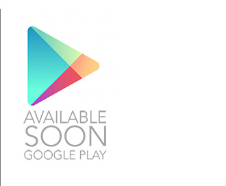 Offline Version - playstore