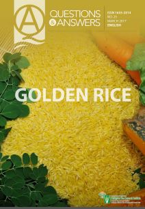 golden-rice-ebook