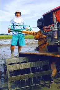 land-preparation-img
