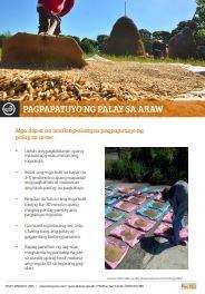 pagpapatuyo-ng-palay-sa-araw