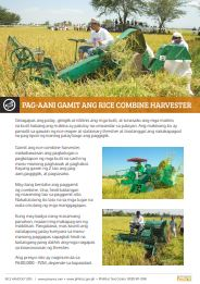 pag-aani-gamit-ang-rice-combine-harvester