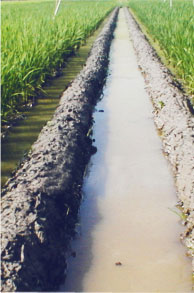water-management-img